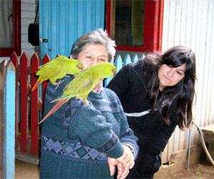gisi-mapuche