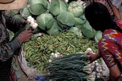 Sube el precio de los alimentos (Foto WB)