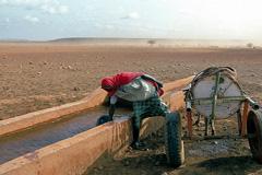 El agua escasea en el mundo (WB)