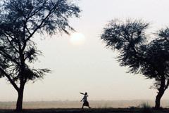 Sequía y éxodo (WB)