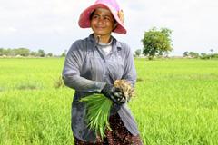 Trabajadora rural venezolana (WB)