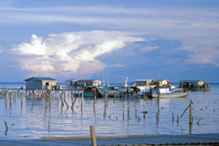 Clima: sube el nivel del mar (WB)