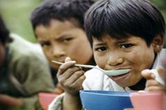 Velar por la inocuidad de los alimentos (WB)