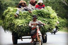 En marcha los objetivos de desarrollo sostenible.