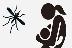 Proteger a embarazadas del mosquito Zika (OPS)