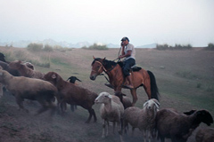 Prioridad al empleo juvenil rural (UN)