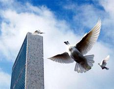 Día Internacional de la Paz: trabajar para la solución pacífica de todos los conflictos