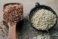Variedades de quinua - foto Gindysia