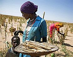Con la crisis aumentaron las desigualdades de género en materia de desempleo