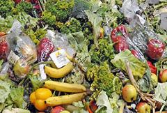 Desperdicios de alimentos (FAO)