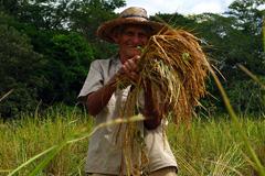Campesino colombiano Foto UNODC