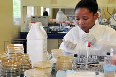 Investigación en el Caribe - Foto PAHO