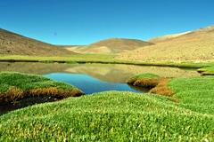 Atacama Chile Foto Ramsar/ Zúñiga