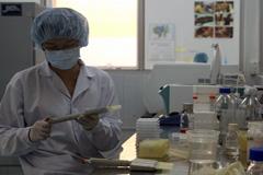 Análisis químicos (Foto WB)