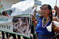 Mujer Tagaeri (Foto Cotopaxi)