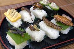 Suchis de insectos (Foto LDD)