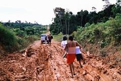 Un camino amazónico (Foto WB/J.P)