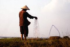 Campesino vietnamita (Foto WB/ Quy Toam Do)