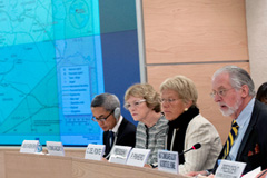 Comisión de investigación de la ONU (Ferré)
