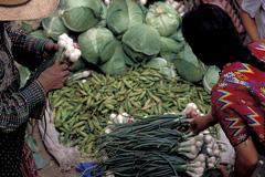 El dilema alimentario mundial (Foto WB)