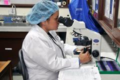 Implementar tecnología para diagnosticar (Foto PAHO)