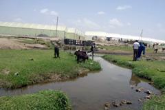 Aguas contaminadas (Foto WB)