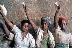Persiste desigualdad de género (Foto UN)