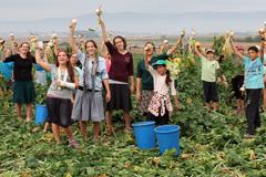 Promoción de huertos familiares (Foto FAO)