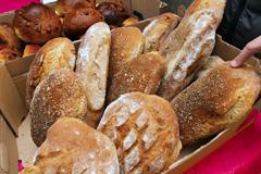 Mucho desperdicio de pan (Foto L.Bisson)
