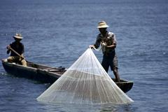 Seguridad alimentaria en la pesca (Foto WB)