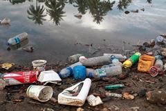 Plásticos letales para vida marina (foto UN)