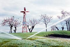Financiar la economía verde (Foto WB)