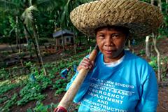 Trabajador agrícola asiático (Foto WB)