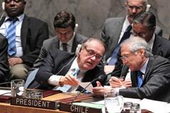 Miembros del Consejo de Seguridad (F.UN)