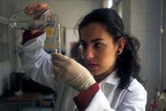 La biotecnología al servicio agrícola (UN)
