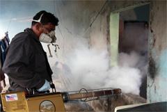 Experto en insecticidas contra el Zika.