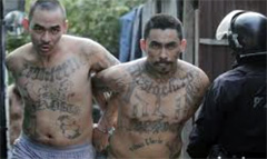 "Dos ""maras"" detenidos (LDD)"