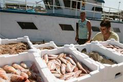 Controles pesqueros (WB)