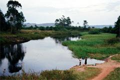 Aumenta contaminación de ríos (WB)