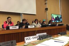Comité para la Eliminación de la Discriminación contra la Mujer examina informe de Chile