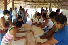 De América para el mundo: comunidades comparten ideas innovadoras que salvan el planeta