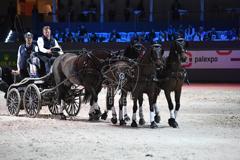 58 Edición de la competición Salón Internacional del Caballo de Ginebra cierra con premio para brasileño