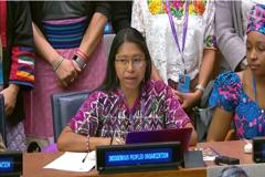 """Foro Permanente para las Cuestiones Indígenas: Llama a Combatir la Prevalencia """"Desproporcionada"""" de Ciertas Enfermedades entre los Aborígenes"""