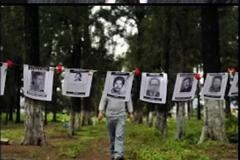 El Comité sobre Desapariciones Forzadas concluyo su decimosexto período de sesiones