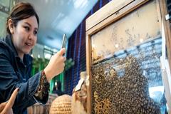 El Día de las Abejas no es solo sobre las abejas