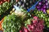 América Latina representa el 20% del desperdicio de comida en el mundo