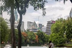 Un nuevo informe de la OMS impulsa los esfuerzos por abordar las principales causas de mortalidad urbana