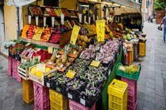 La caridad no debe confundirse con el derecho a la alimentación, asegura experta independiente