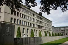 OMC: El barómetro de las mercancías indica un nuevo debilitamiento del comercio en el primer trimestre de 2020