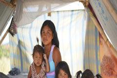 Los indígenas refugiados y desplazados de América Latina tienen una alto riesgo de exposición al coronavirus